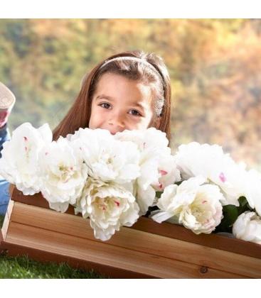 aire de jeux Bac à fleur et plante axi bois exotique