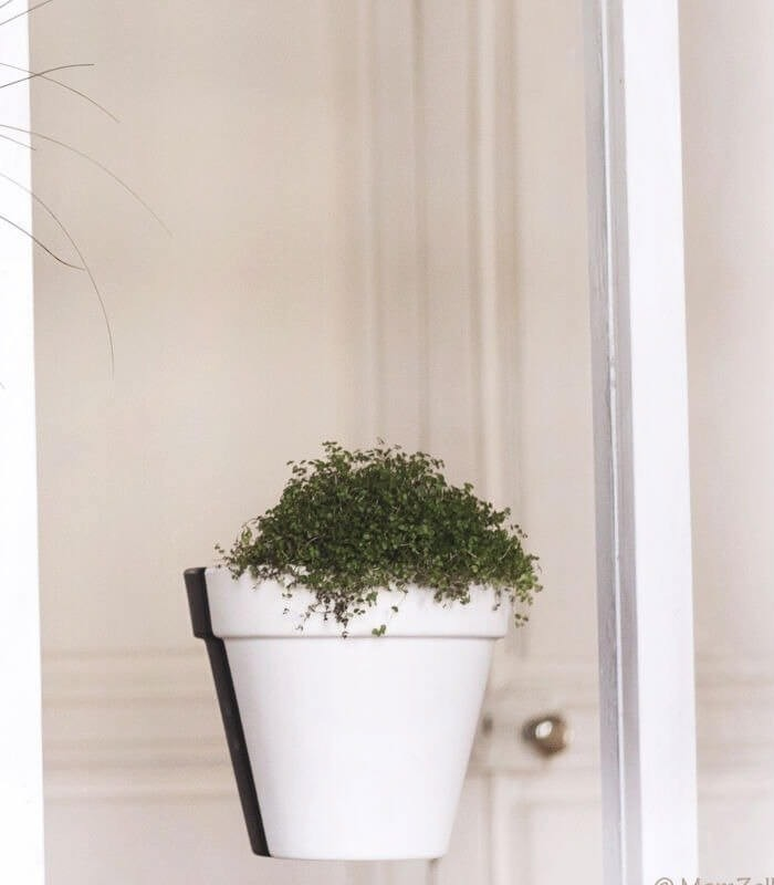 demi cache pot flying pot aimant. Black Bedroom Furniture Sets. Home Design Ideas