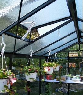 Greenhouse straight walls R205H ACD 8,61m² - 232 x 371cm
