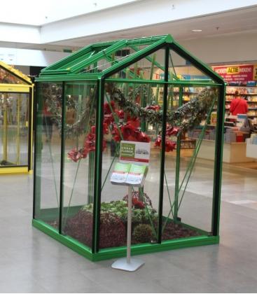 Serre de jardin en verre Piccolo P02 ACD 2.35m² vert mousse