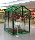 Serre de jardin Picollo ACD 3.56m² - 160 x 225 CM en Aluminium naturel, vitrage verre