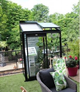 Glass garden greenhouse Miccolo M02 ACD 1.22m² black wall