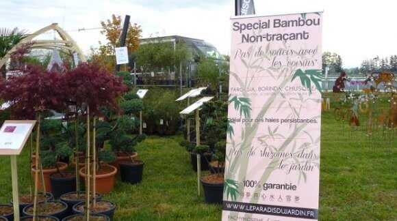 Salon fête des plantes à Hoerdt 2016